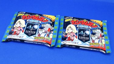 ビックリマン 機動戦士ガンダムマンチョコを追加購入する!(3)