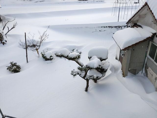 年末年始は大雪の奥さんの実家に帰省!