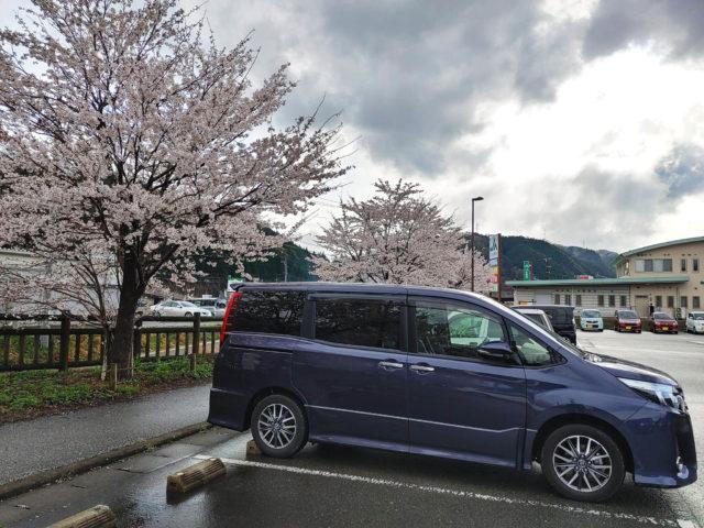 奥さんの実家と道の駅の桜 2021